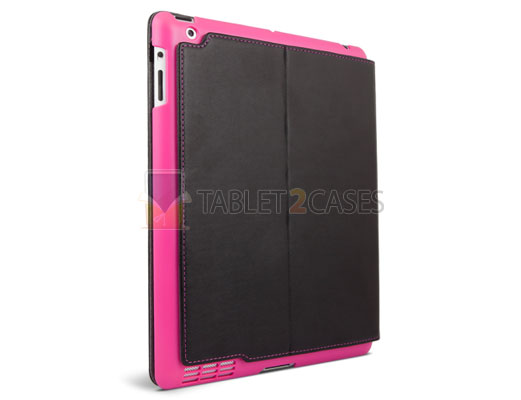 iFrogz iPad 2 Summit back protector case in pink