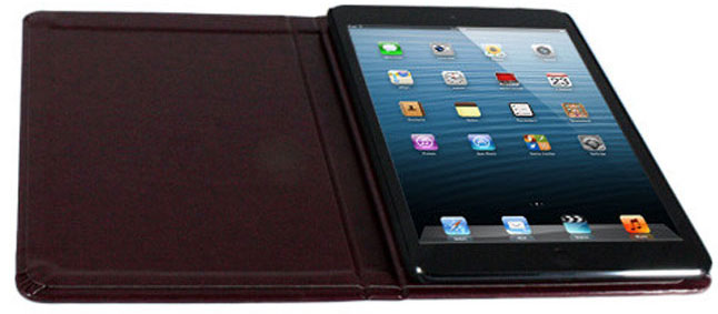 iPad Mini Case from iDreamCase