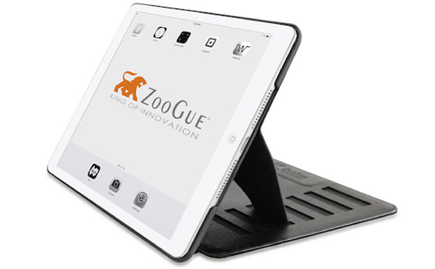Inexpensive folio case with a variety of useful functions